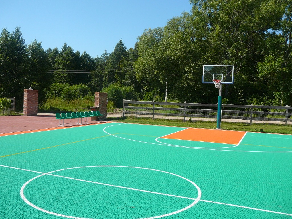 What is the coating made on sports fields 100
